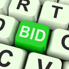 What Is Online Bidding All About Salasar Auction